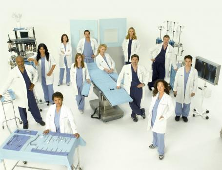 greys-anatomy-season-five-cast_455x348